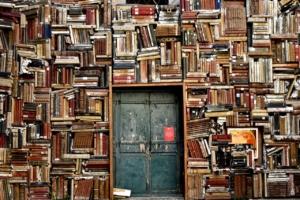 Bücher ausleihen