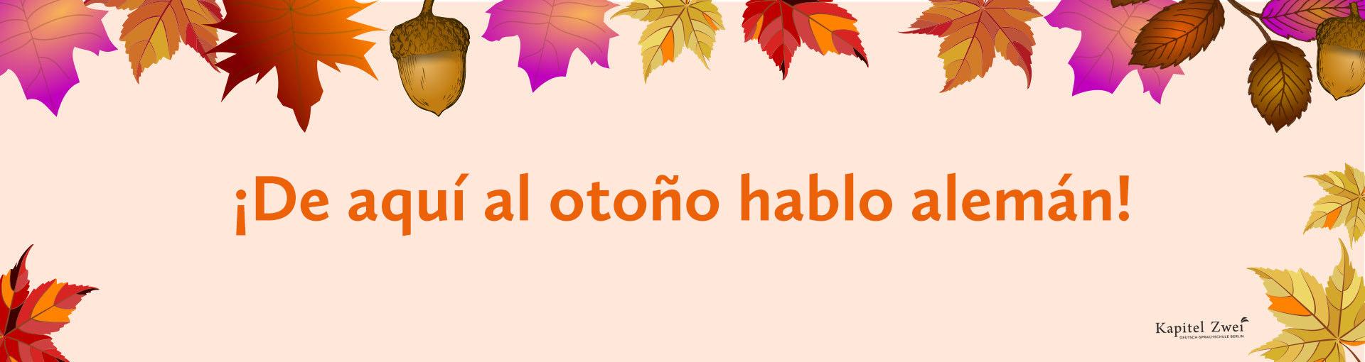 Curso de alemán aprender alemán Berlín online offline